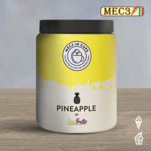 MEC3 Ananas Topping von GRANFRUTTA
